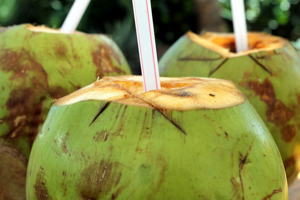 FIRE Travel Family - Always Buy The Coconut - Financial Independence - Retire Early - Coconut Drink